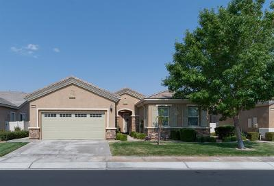 Apple Valley Single Family Home For Sale: 10943 Katepwa Street