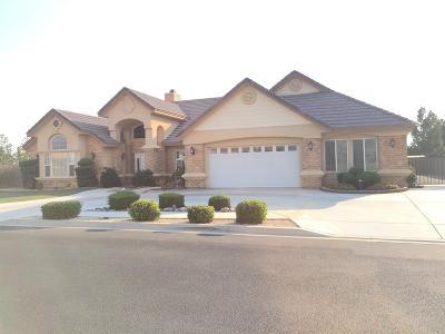 Apple Valley Single Family Home For Sale: 11192 Lindsay Lane