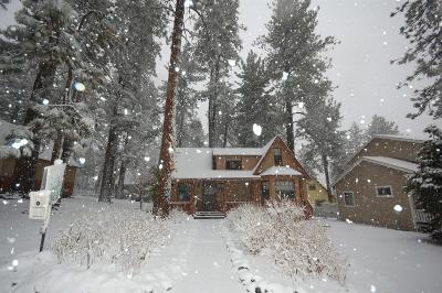 Wrightwood Single Family Home For Sale: 1630 Sparrow Road
