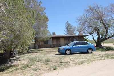 Apple Valley Single Family Home For Sale: 20144 Tussing Ranch Road
