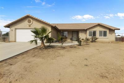 Apple Valley Single Family Home For Sale: 11138 Lovia Lane