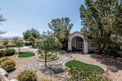 Apple Valley Single Family Home For Sale: 12936 La Cresta Drive