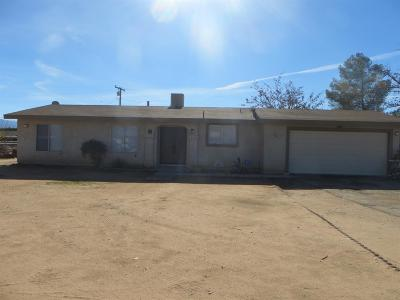 Apple Valley Single Family Home For Sale: 21045 Little Beaver Road