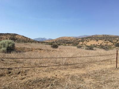 Phelan Residential Lots & Land For Sale: 40 Acres