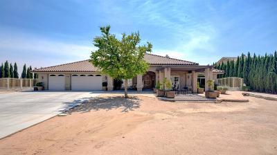 Hesperia Single Family Home For Sale: 10421 Choiceana Avenue