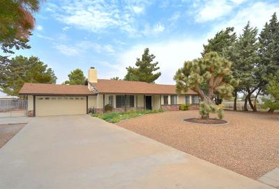 Hesperia Single Family Home For Sale: 7958 Sherborn Avenue