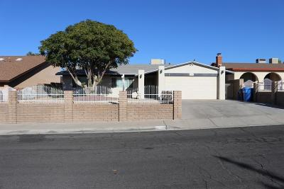 Barstow Single Family Home For Sale: 851 Cholla Drive