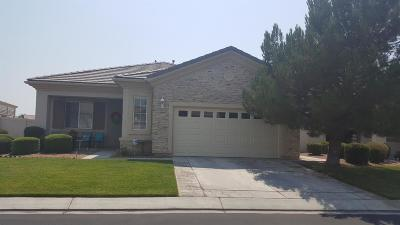 Apple Valley Single Family Home For Sale: 10938 Rockaway Glen Road