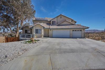 Victorville Single Family Home For Sale: 12501 Fairway Road