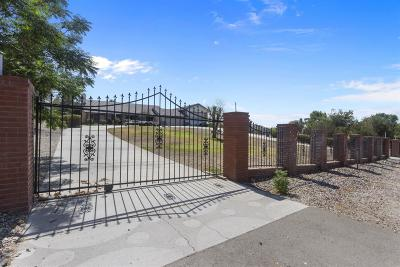 Apple Valley Single Family Home For Sale: 14922 Riverside Drive