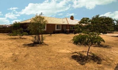 Hesperia Single Family Home For Sale: 10685 10th Avenue