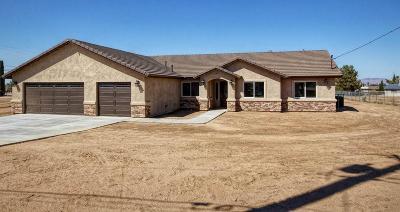 Hesperia Single Family Home For Sale: 8069 Newhall Avenue