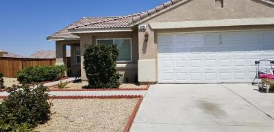 Adelanto Single Family Home For Sale: 10968 Remington Street