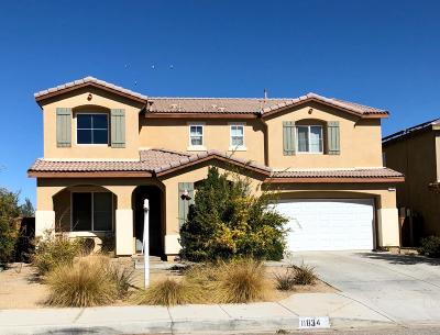 Victorville Single Family Home For Sale: 11834 Nyack Road