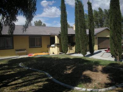 Hesperia Single Family Home For Sale: 17196 Manzanita Street