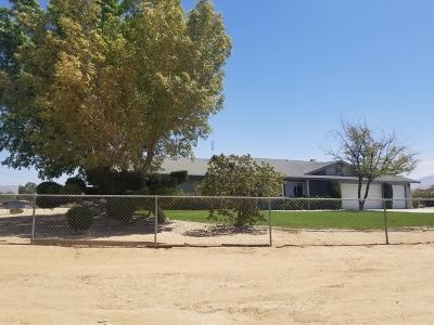 Apple Valley Single Family Home For Sale: 11125 Blackfoot Road