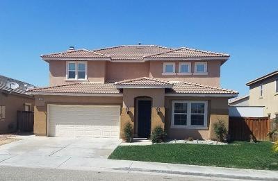 Hesperia Single Family Home For Sale: 13220 Pomona Street