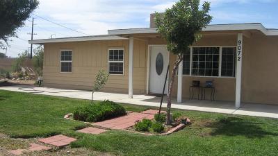 Hesperia Single Family Home For Sale: 9072 3rd Avenue