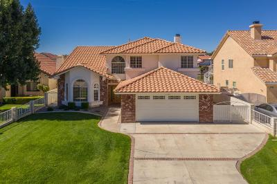 Victorville Single Family Home For Sale: 13586 Sea Gull Drive