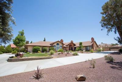 Apple Valley Single Family Home For Sale: 12915 Valley View Court