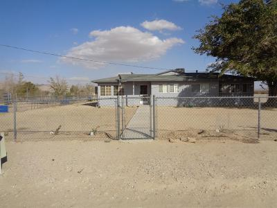 Lucerne Valley Single Family Home For Sale: 10837 Medanos Avenue