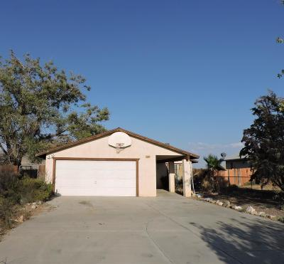 Apple Valley Single Family Home For Sale: 12757 Central Road
