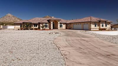 Apple Valley Single Family Home For Sale: 16533 Kalo Court