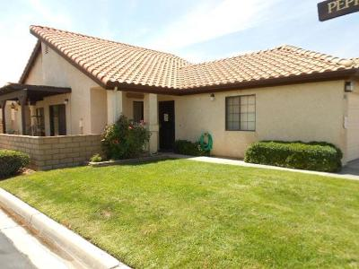 Apple Valley Single Family Home For Sale: 19273 Palm Way