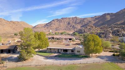 Apple Valley Single Family Home For Sale: 16750 Moccasin Road #92307