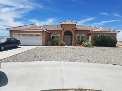 Victorville Single Family Home For Sale: 16802 Village Drive