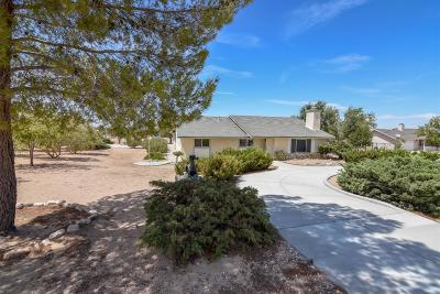 Apple Valley Single Family Home For Sale: 10922 Valley Vista Avenue