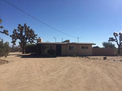 Victorville Single Family Home For Sale: 11917 Anaconda Road
