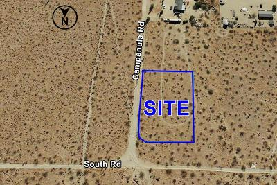 Phelan Residential Lots & Land For Sale: South Road