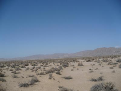 Lucerne Valley Residential Lots & Land For Sale: Poppy Street