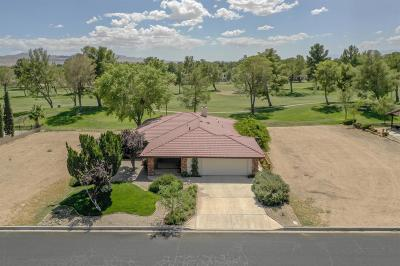 Helendale Single Family Home For Sale: 14899 Tournament Drive