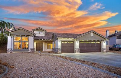 Apple Valley Single Family Home For Sale: 12361 Tonopah Court