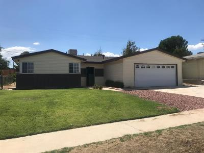 Victorville Single Family Home For Sale: 16151 Colina Street