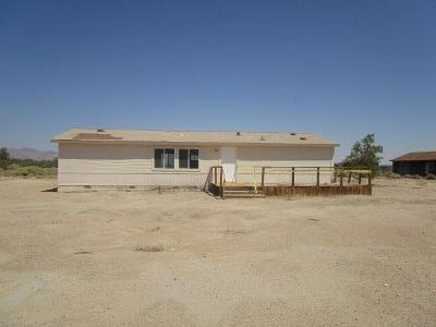 San Bernardino County Single Family Home For Sale: 41242 Dogwood Street