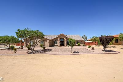 Apple Valley Single Family Home For Sale: 14655 Tigertail Road