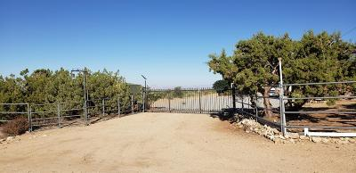 Pinon Hills Single Family Home For Sale: 728 Nielson Road