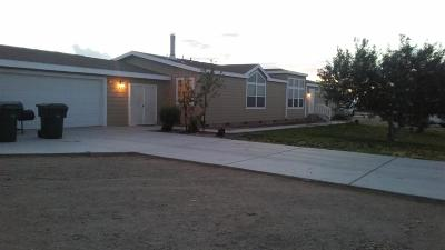 Helendale Single Family Home For Sale: 27528 Pinto Road