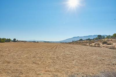 Hesperia Residential Lots & Land For Sale: 8531 Glendale Avenue