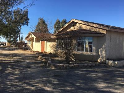 Barstow Single Family Home For Sale: 25046 Agate Road