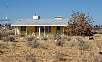 Apple Valley Single Family Home For Sale: 21374 Viento Road