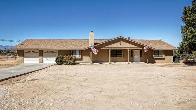 Apple Valley Single Family Home For Sale: 9508 Sagebrush Street