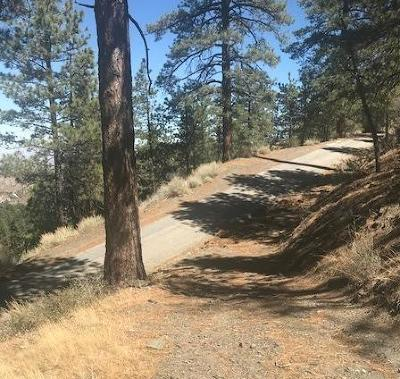 Wrightwood Residential Lots & Land For Sale: S Mojave Scienic Drive
