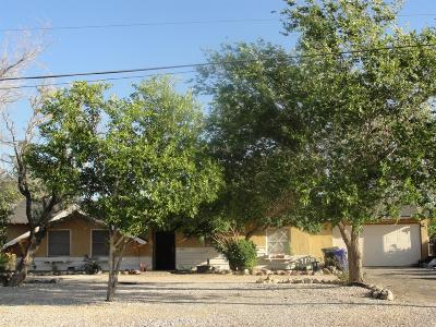 Apple Valley Single Family Home For Sale: 22405 Little Beaver Road