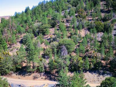 Wrightwood Residential Lots & Land For Sale: Mojave Scenic Drive S