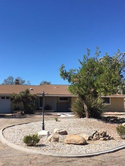 Apple Valley Single Family Home For Sale: 20861 Us Highway 18
