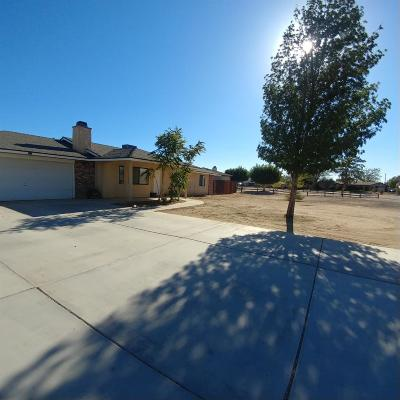 Apple Valley Single Family Home For Sale: 11639 Pagosi Road